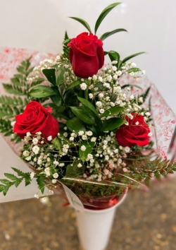 Ramo 3 rosas rojas de tallo largo