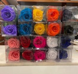 Rosa preservada o rosa eterna