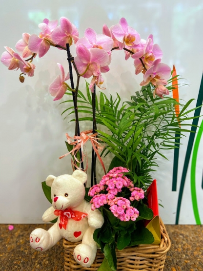 Centro de orquídea con peluche