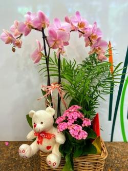 Centro de flor variada con pelucha