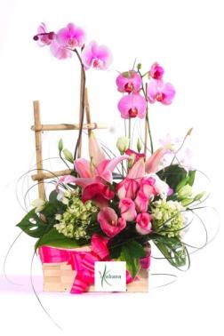 Centro rosas con orquidea