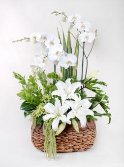Cesta de flores con orquídeas
